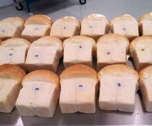 Kansas State University Better Bread Testing