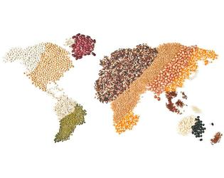 Map of the world made with pulses and grains