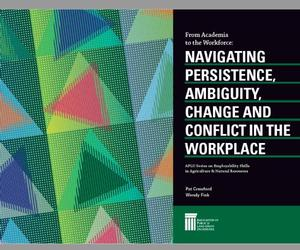 From Academia to the Workforce: Navigating Persistence, Ambiguity, Change and Conflict in the Workplace