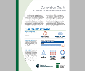 Cover of completion grant report.